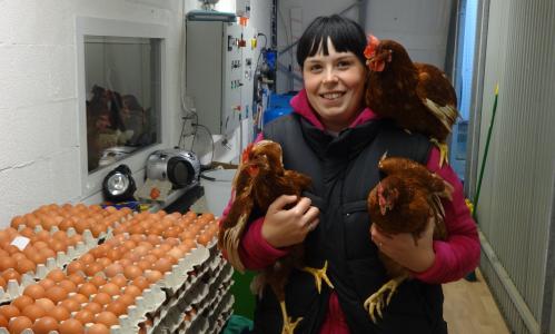 Berceto - Azienda Agricola Alice Saccani, produzione uova