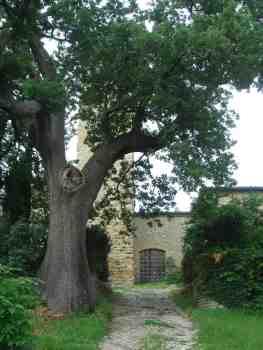 Salsomaggiore - Castello di Contignaco, fortezza degli Aldighieri