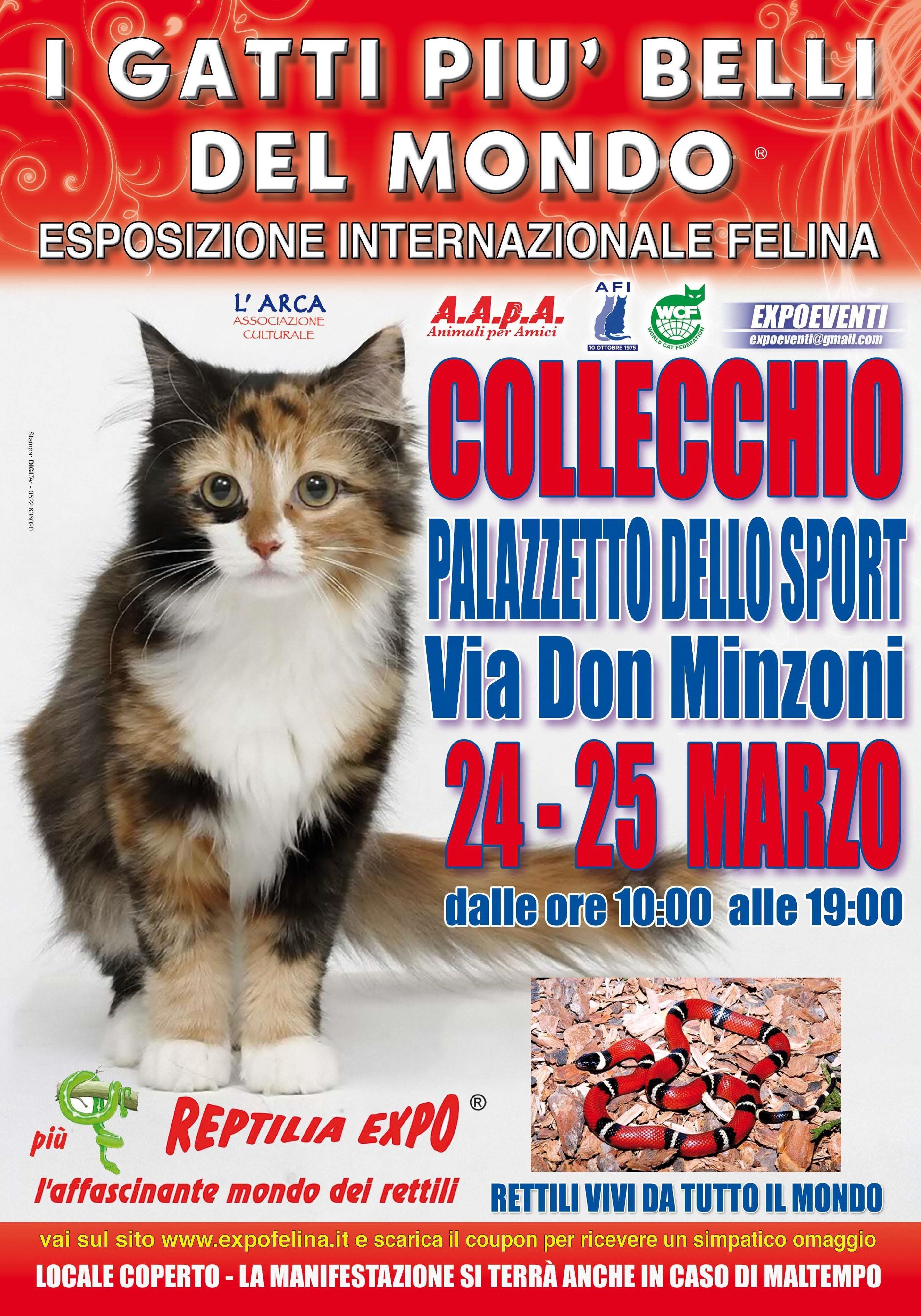 Esposizione Internazionale Felina e mostra dei rettili