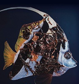 'Il mare sottosopra': mostra d'arte a Villa Soragna