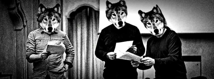 Storia di un lupo, Ligabue o LM15, investito in tangenziale e arrivato in Francia