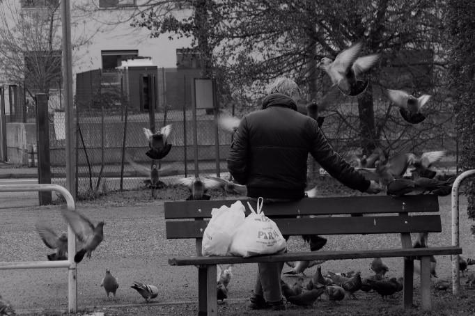 """MOSTRA FOTOGRAFICA """"SCATTI SOCIALI"""" NELLA SEDE CENTRALE DELL'ATENEO"""