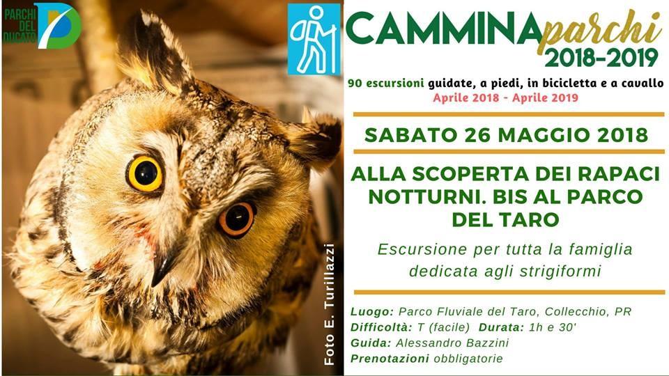 Camminaparchi - Escursione - Alla scoperta dei rapaci notturni.