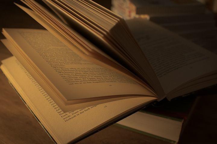 """Presentazione del libro """"Di ferro e d'acciaio"""" di Laura Pariani"""