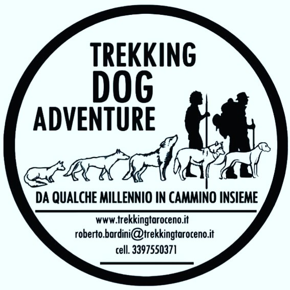 TREKKING DOG ADVENTURE: LE CASCATE DEL PESSOLA
