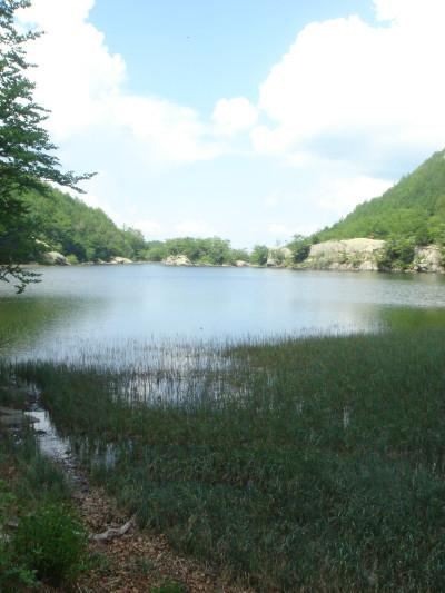 Da Lagdei ai Lagoni per il Monte BrusàEscursione sul crinale vista laghi