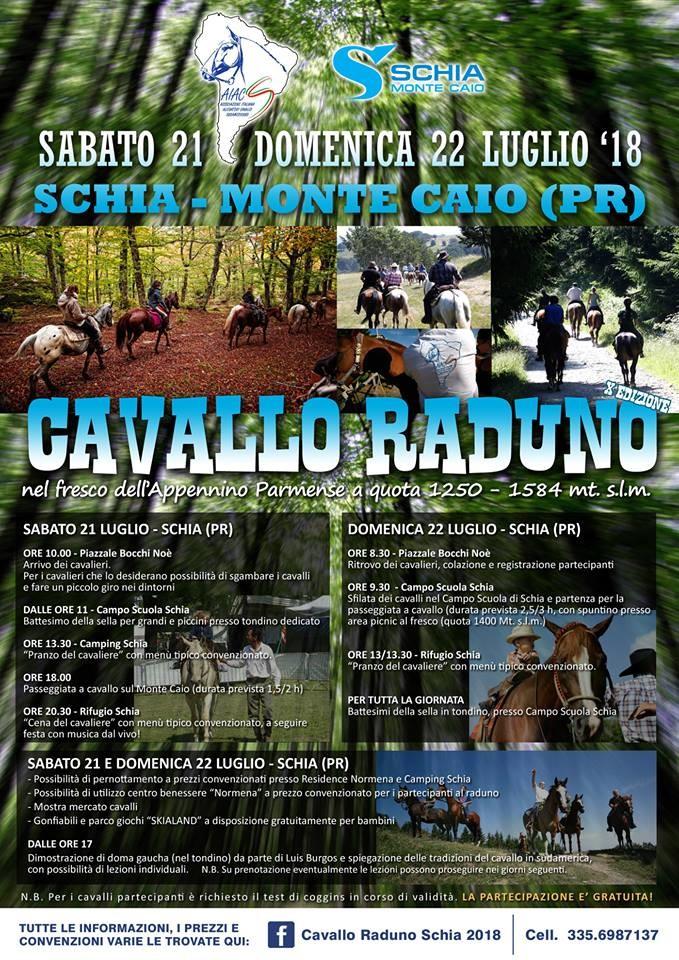 Cavallo Raduno Schia 2018
