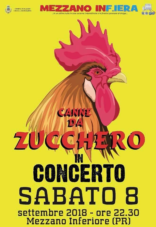 Canne da Zucchero in concerto a Mezzani