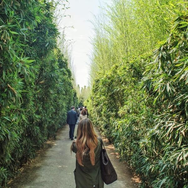 Vivi il Verde 2018 al Labirinto della Masone: visite guidate nel labirinto di bambù