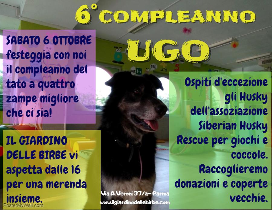 Giornata sulla pet therapy in onore del sesto compleanno del cagnolone Ugo
