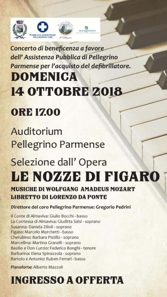 Le nozze di Figaro, concerto benefico