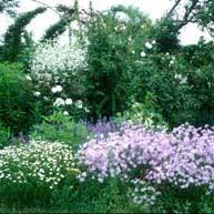 Ricordando Paolo Gelati  Il 20 ottobre ADA Onlus e LiPU Parma invitano alla riapertura del giardino naturale