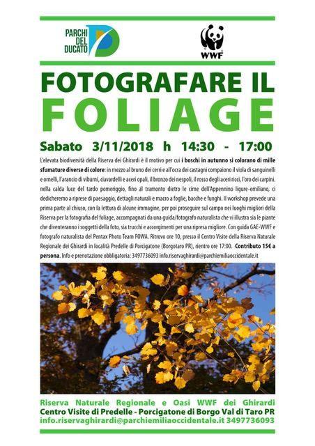 FOTOGRAFARE IL FOLIAGE   Sabato 3 Novembre Workshop fotografico
