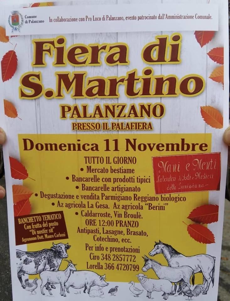 Fiera di S.Martino a Palanzano