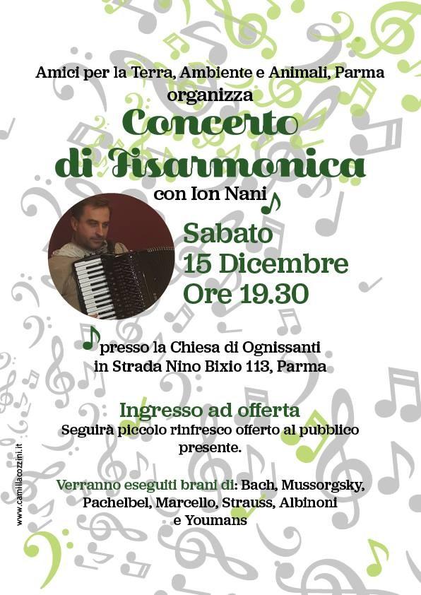 Concerto di Fisarmonica con Ion Nani