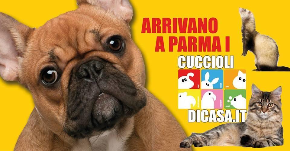 Cuccioli di casa alle Fiere di Parma