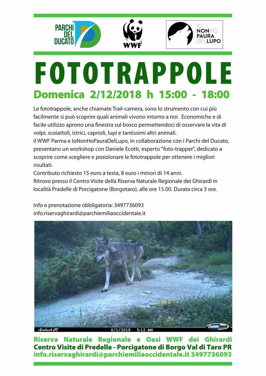 FOTRAPPOLE  Domenica 2 Dicembre Workshop fotografico