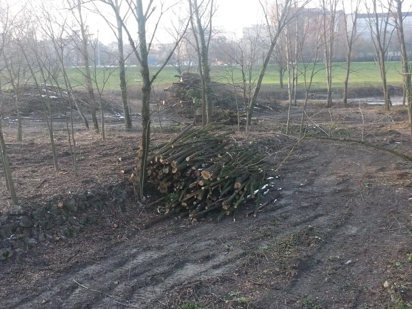 Legambiente ribadisce che l'Area di Riequilibrio Ecologico del torrente Parma è stata cancellata