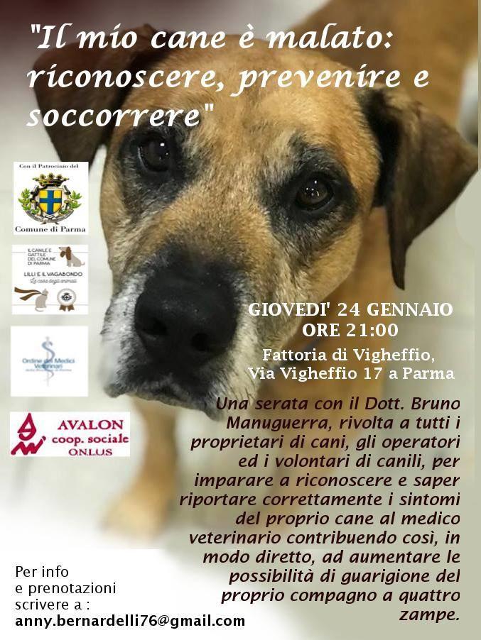Il mio cane è malato:riconoscere, prevenire e soccorrere