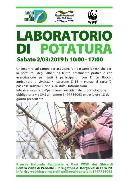LABORATORIO DI POTATURA