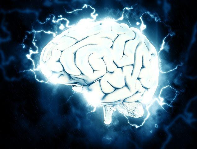 Settimana mondiale del cervello: le iniziative dell'Ausl all'Ospedale di Vaio