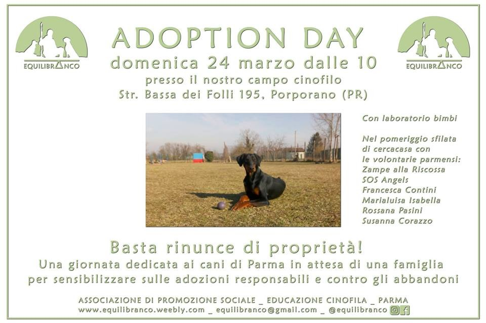 Adoption Day di Primavera