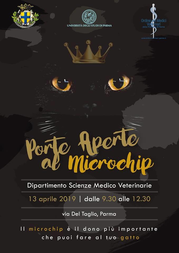 'Porte aperte al microchip', microcippatura gratuita per gatti
