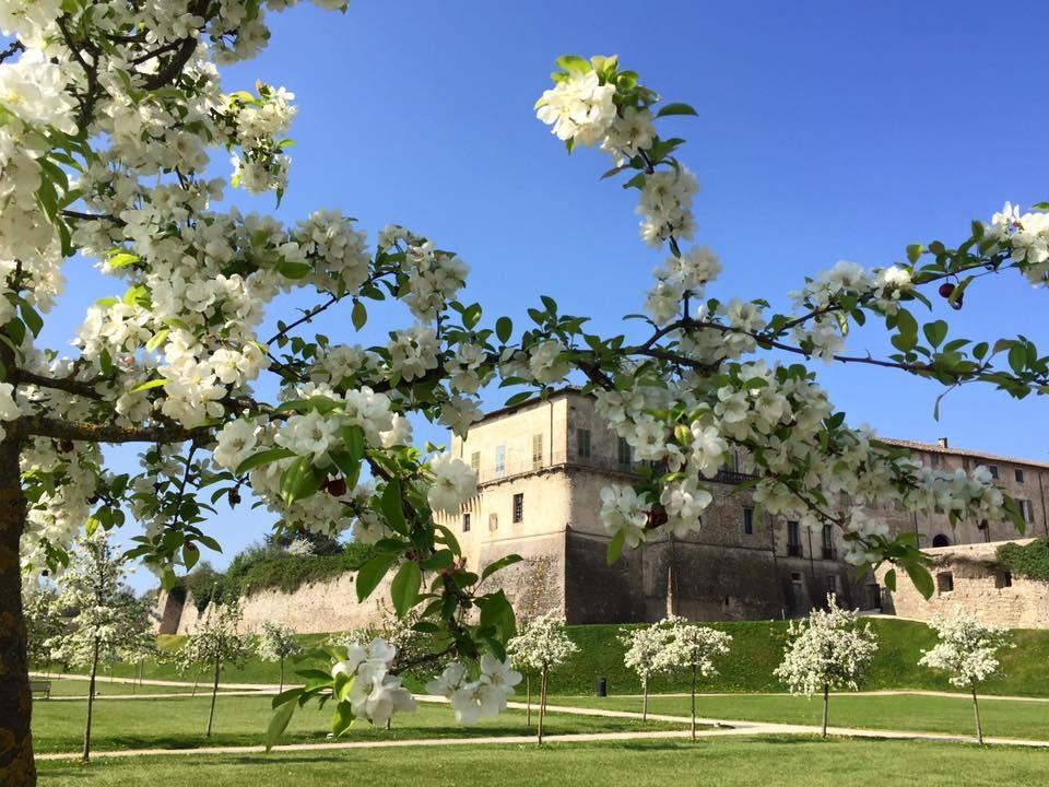 Il 21 e 22 aprile, la Pasqua è in Rocca: Caccia al tesoro, visita guidata in costume d'epoca e Museo del Vino