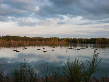 In maggio mini visite gratuite all'Area Le Chiesuole nel Parco del Taro