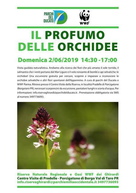 IL PROFUMO DELLE ORCHIDEE  nella Riserva dei Ghirardi