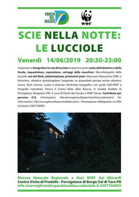 SCIE NELLA NOTTE: LE LUCCIOLE   Laboratorio fotografico naturalistico