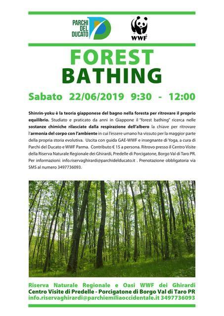 FOREST BATHING    Passeggiata sensoriale nel bosco