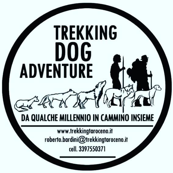 TREKKING DOG ADVENTURE: picnic al lago con il cane