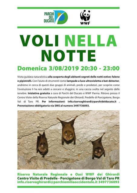 VOLI NELLA NOTTE Visita guidata naturalistica alla scoperta degli abitanti segreti delle notti estive: falene e pipistrelli