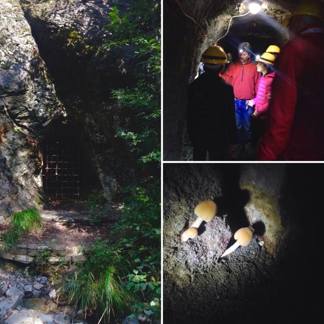 Viaggio alle Miniere di Corchia