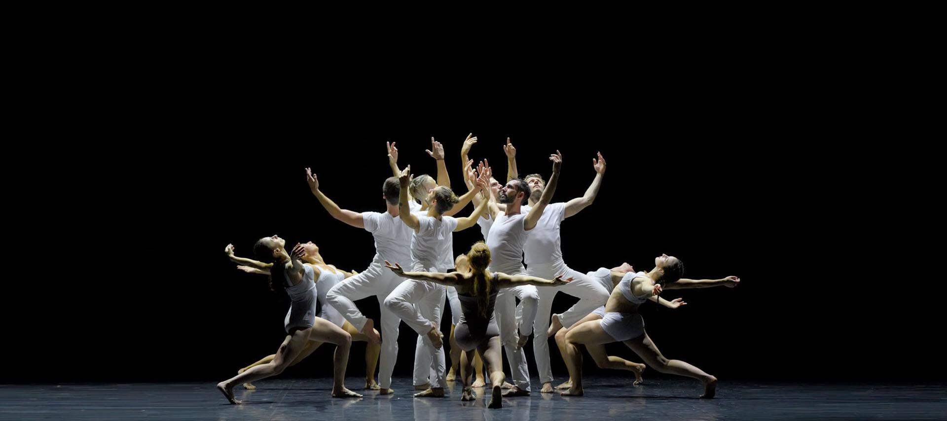 Teatro Regio: prevendita biglietti PARMADANZA
