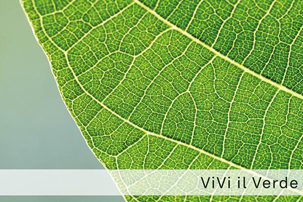 """""""Vivi il Verde"""":  visita guidata della Picasso Food Forest"""