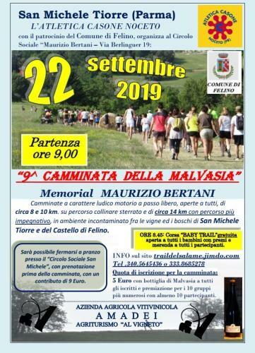 """""""Camminata della Malvasia - Memorial Maurizio Bertani""""  nona edizione, evento sportivo non competitivo"""