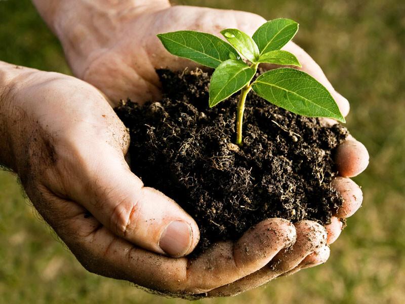 Unione Pedemontana Parmense Servizi per il compostaggio: incontri e stand per i cittadini