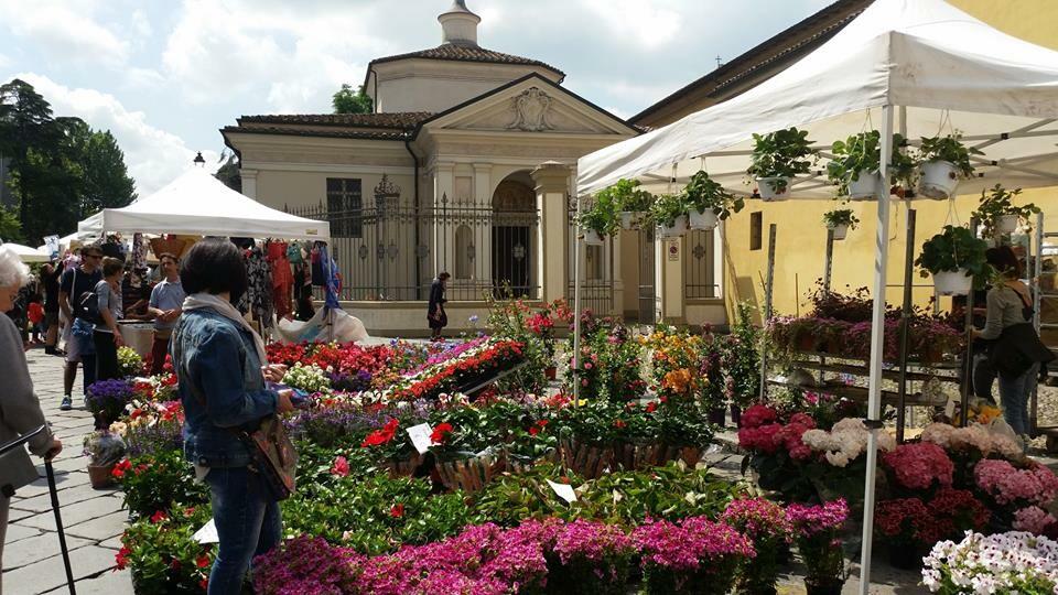 Festa dei Fiori, profumi e brocantage in via Farini