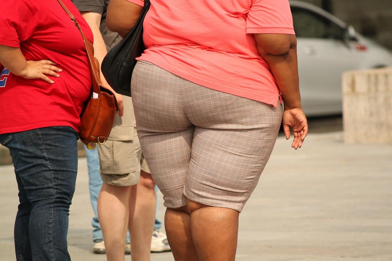 12^ edizione Obesity Week  Dal 10 al 20 Ottobre incontri su qualità del cibo, salute, sedentarietà, e...