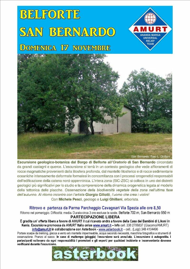 Le foreste autunnali di Belforte, escursione con geologo ed erborista