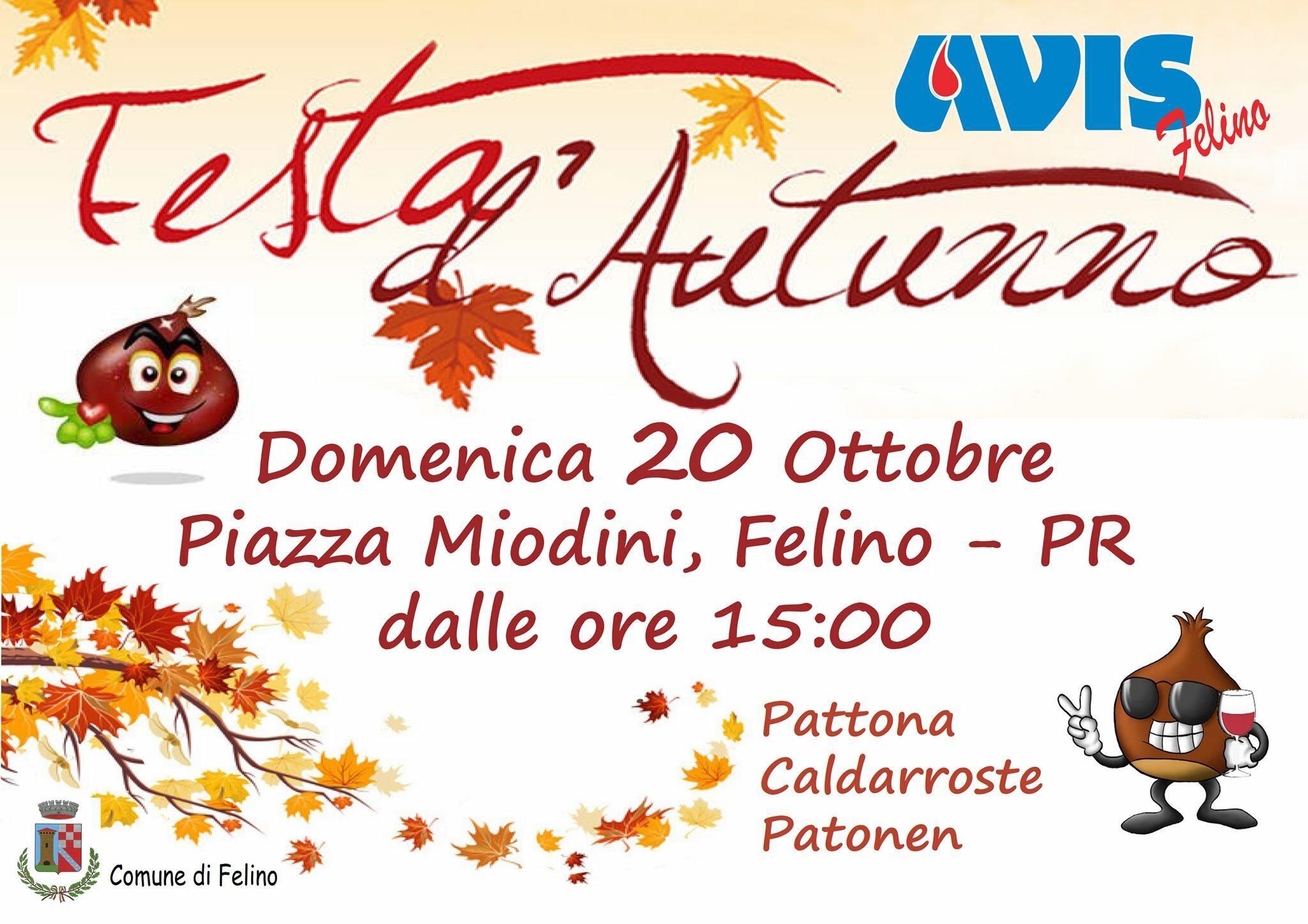 Festa d'Autunno: Castagnata dell'Avis in piazza Miodini