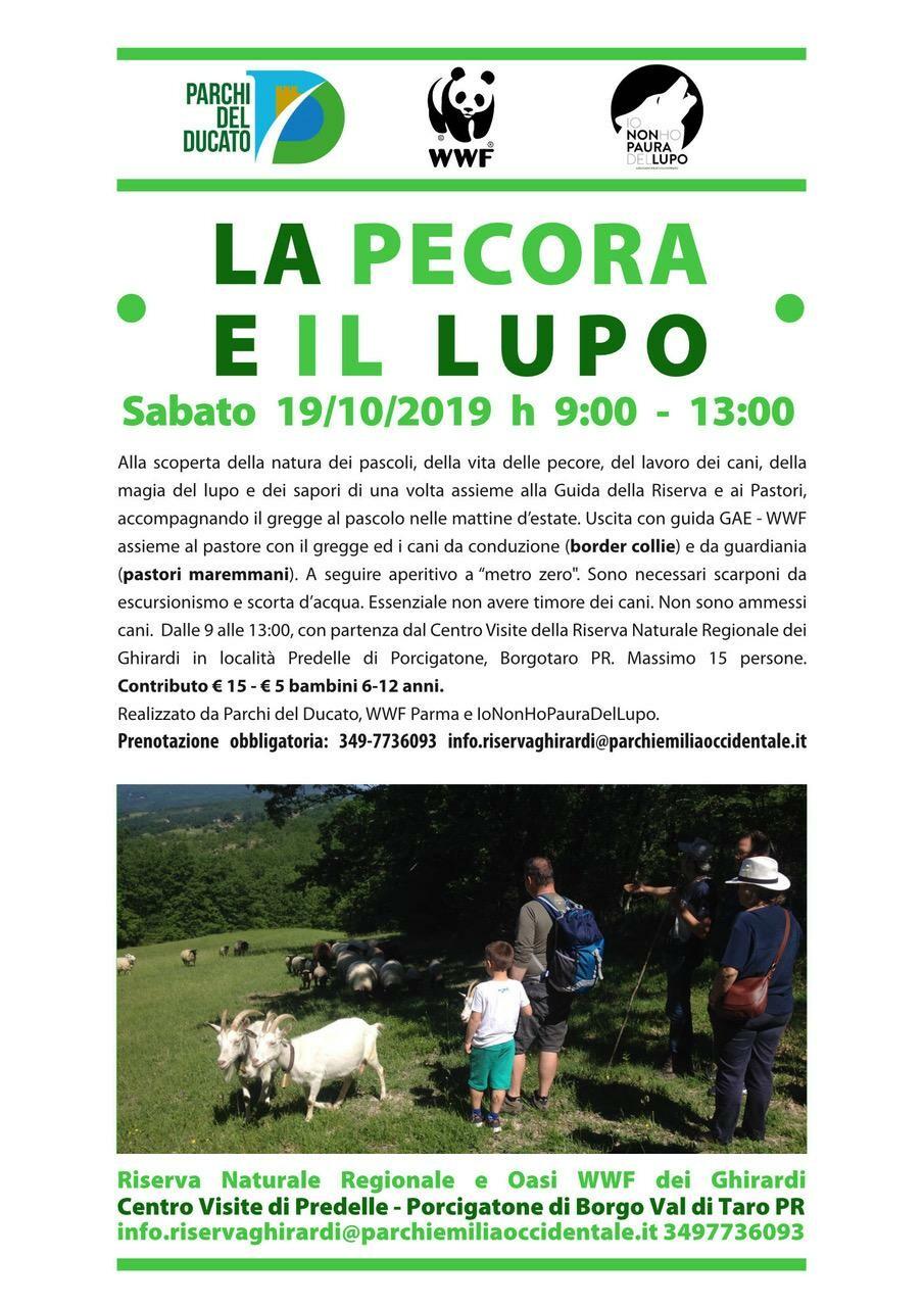 LA PECORA E IL LUPO  Uscita al pascolo con le pecore e il pastore alla Riserva Naturale Regionale dei Ghirardi