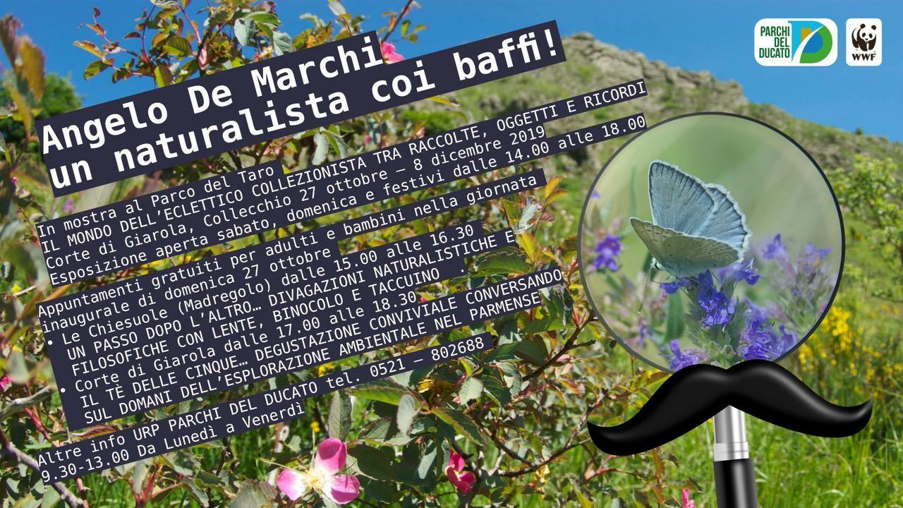 Angelo de Marchi, un naturalista coi baffi! Domenica 27 Ottobre alla Corte di Giarola, Collecchio