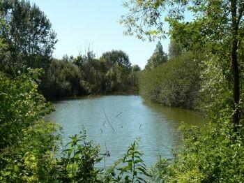 ATTENZIONE: Piena del fiume Po INFORMAZIONI DELLE ORE 22 DEL 25 novembre