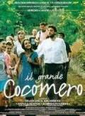 """""""Il cinema italiano degli anni '90"""":  IL GRANDE COCOMERO   di Francesca archibugi"""