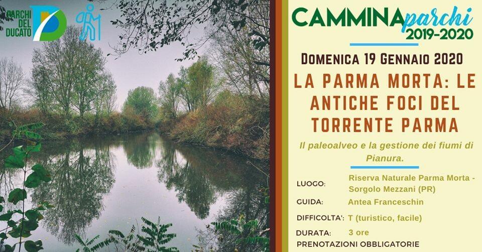 Camminaparchi - La Parma Morta: antiche foci del torrente Parma