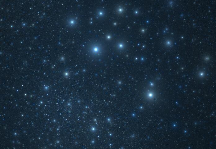 Notte nella Foresta e poi stelle e vin brulè