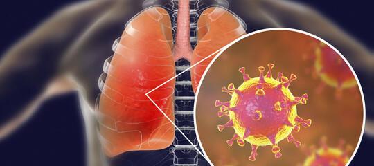 Coronavirus: tutto quello che c'è da sapere: le informazioni dall'AUSL DI PARMA